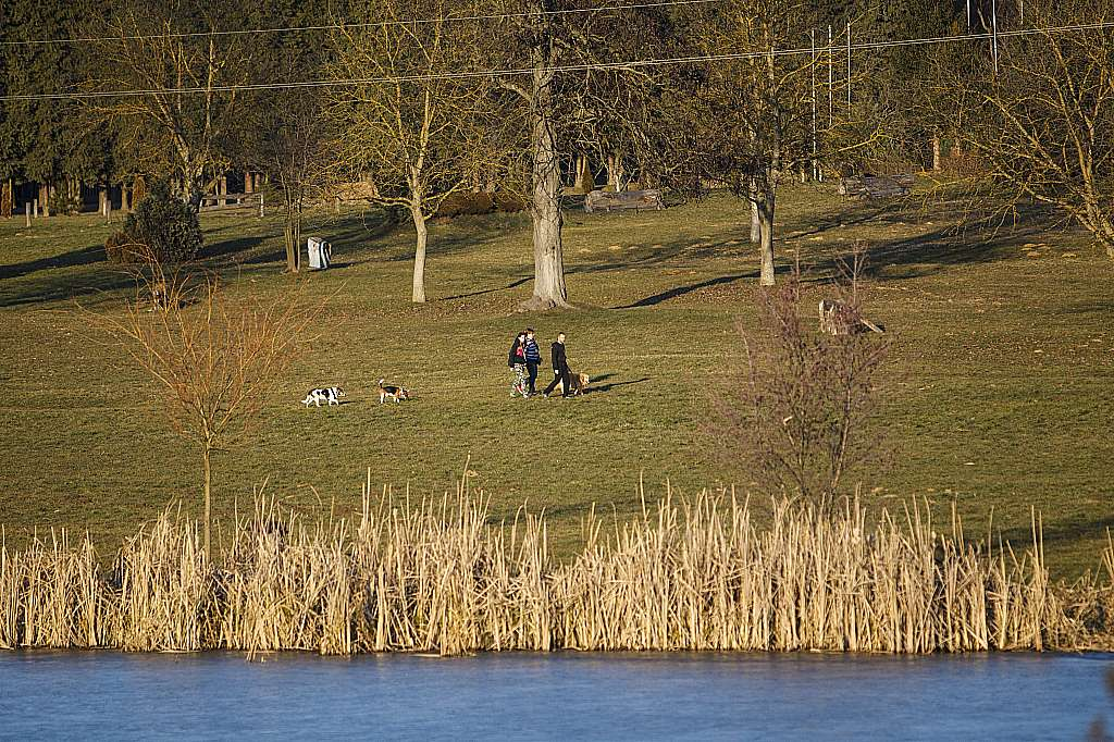 Nagykanizsa, 2016. január 28. Kirándulók a tavaszias napsütésben a nagykanizsai Csónakázó-tónál 2016. január 28-án. Kora délután 15 Celsius-fok volt a levegõ hõmérséklete. MTI Fotó: Varga György
