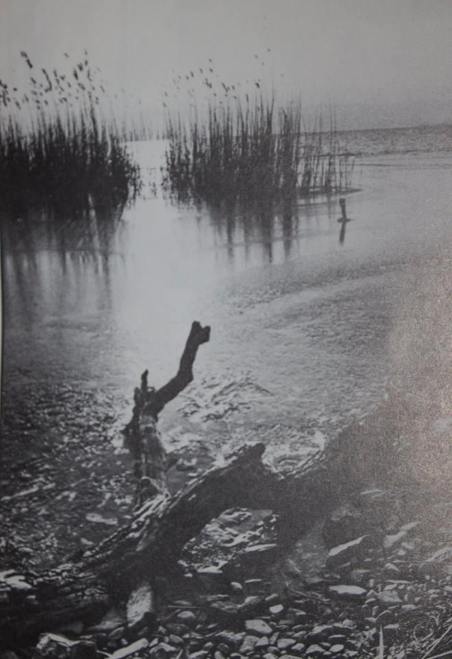 nagykanizsa pichler józsef fotó 2