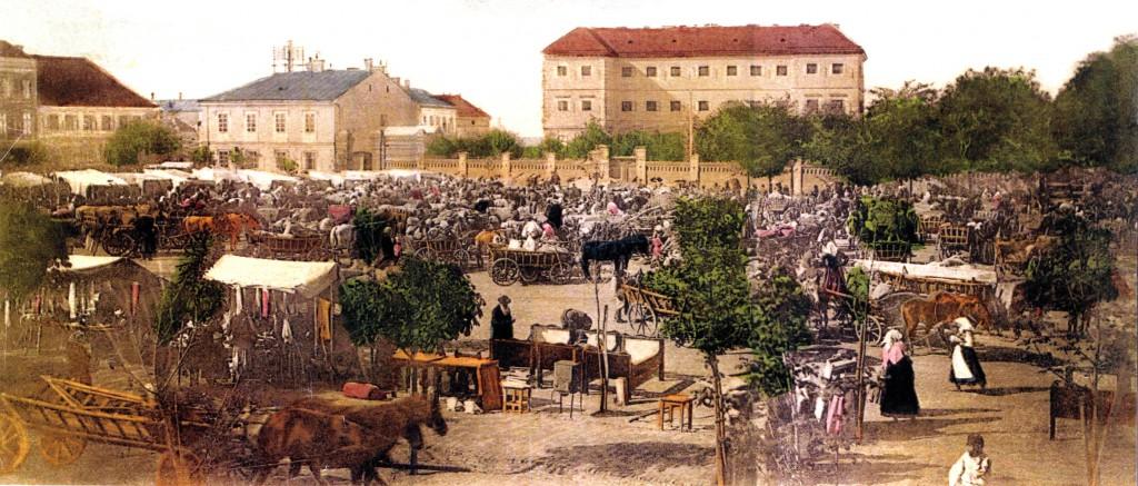nagykanizsa erzsébet királyné tér 1